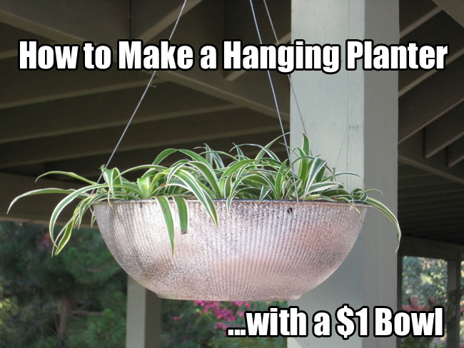 How to Make a Hanging Planter with a $1 Bowl