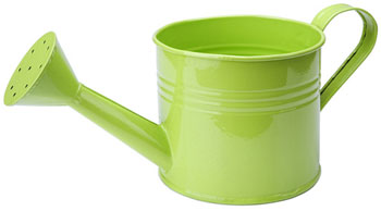 Green Metal Watering Can